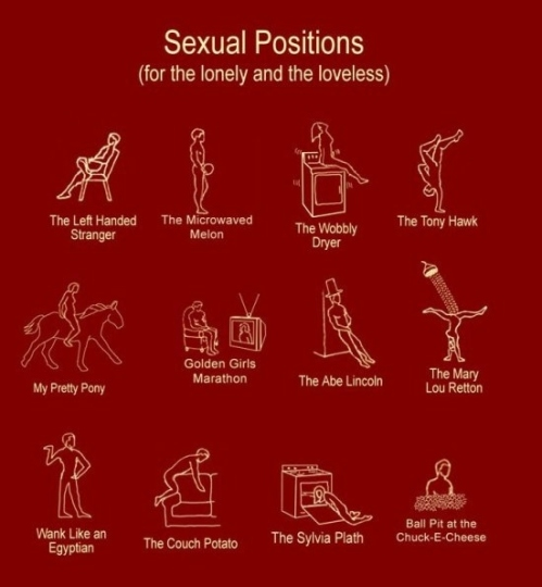 sexual-positions-for-the-lonely-24355-1257871434-2